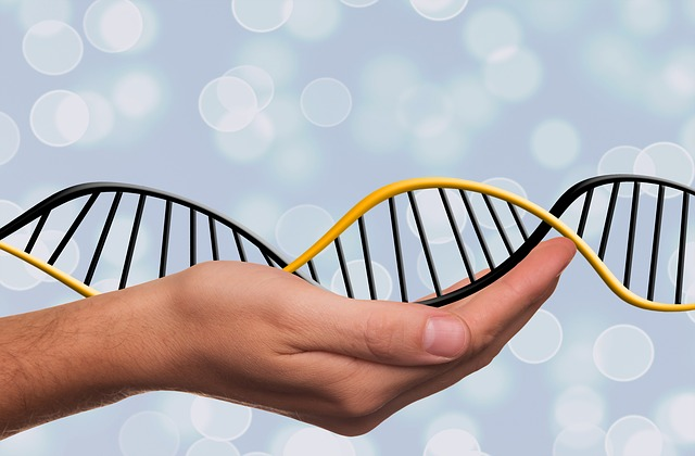 Patenting DNA: Does Canada Have it Right?